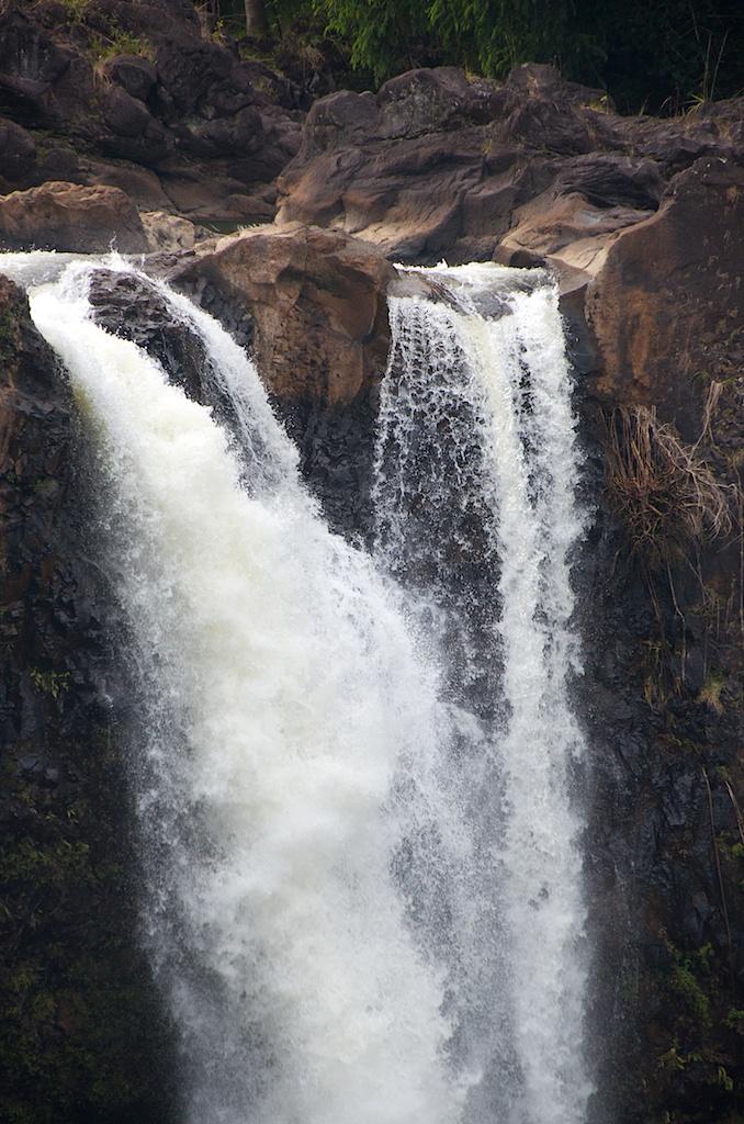 waterfallday (10)