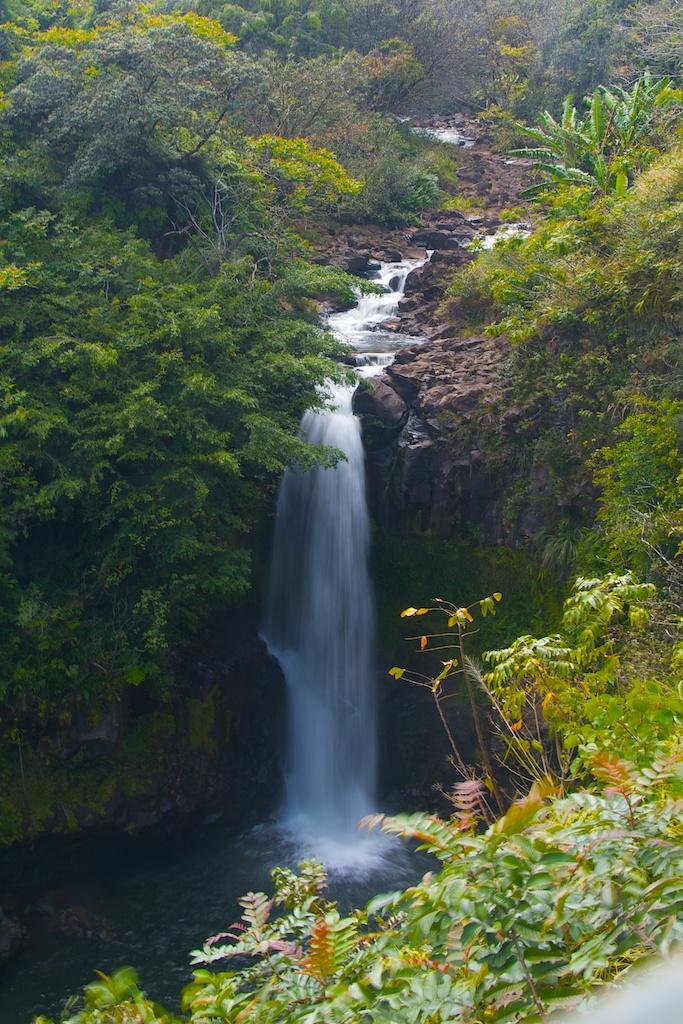 waterfallday (6)