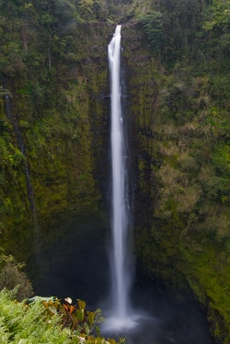 waterfallday (7)